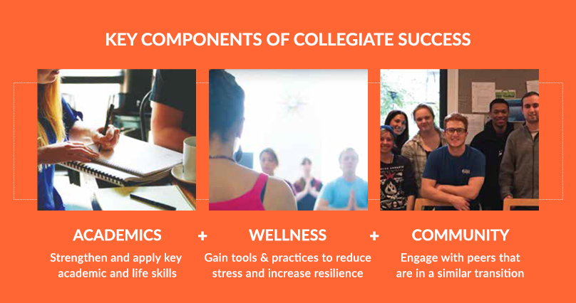 3 Key Components for Collegiate Success